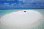 Maldives Tourism & Birder